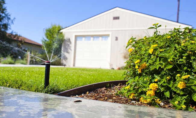 After rain fall, turn off your automatic sprinklers to conserve water.