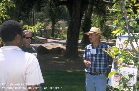 Chuck Ingels, UCCE advisor in Sacramento County, discusses tree pests. UC seeks comments on proposed UCCE positions.