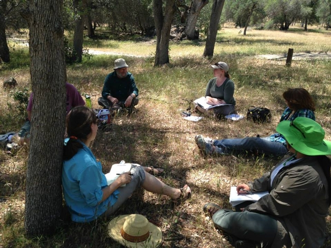 California Naturalist training in an outdoor classroom.