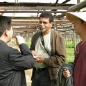 Aziz Baameur, center, discusses leafy greens production with Professor Qingquo Wang and grower Mike Lee.