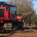 The IronWolf 700B removes almond  trees measuring 15 to 25 inches in diameter east of Chowchilla.