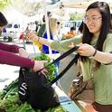 Farmers markets are one form of direct marketing. (Karin Higgins/UC Davis)