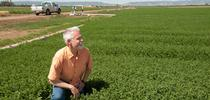 """""""Many programs in California have been recently put in place to help balance the benefit and harm of nitrogen use,"""" says Thomas Tomich, ASI director. Gregory Urquiaga/UC Davis 2016 for ANR news releases Blog"""