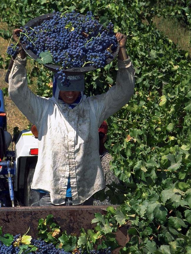 Farm-worker