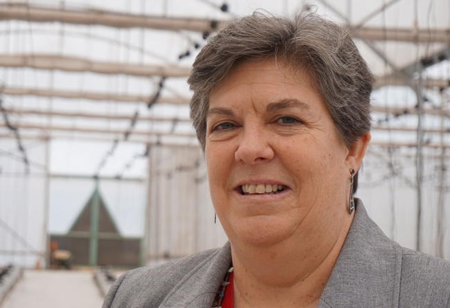 UC ANR vice president Glenda Humiston will testify before the House Committee on Agriculture June 22 about the value of federally funded agricultural research.