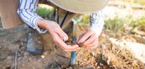 gardener examines soil for ANR news releases Blog