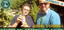 Sacramento high school students from the Edible Sac High school garden program discuss their start-up Sangre del Dragón Hot Sauce company on CropMobster TV. for ANR news releases Blog