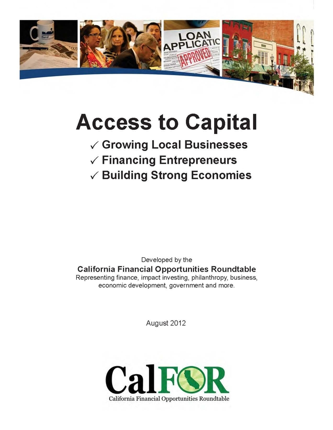 The Access to Capital guide provides innovative options for financing projects for small business owners, policymakers and financial institutions.