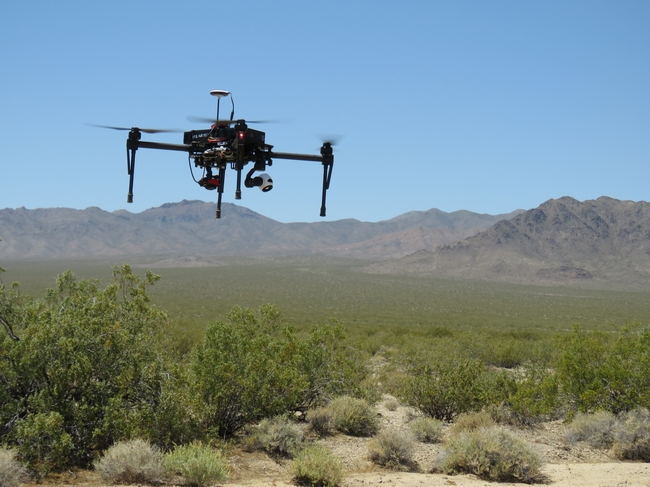 A drone flies over the Mojave Desert to create a detailed vegetation map for a desert tortoise habitat study.