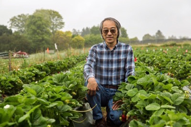 Joji Muramoto is the first UC Cooperative Extension specialist dedicated to organic agriculture. Photo by Carolyn Lagattuta