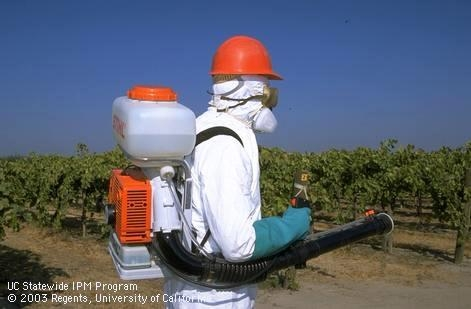 People who work on farms wear personal protective equipment to protect themselves from COVID-19, pesticides, dust and other health hazards.