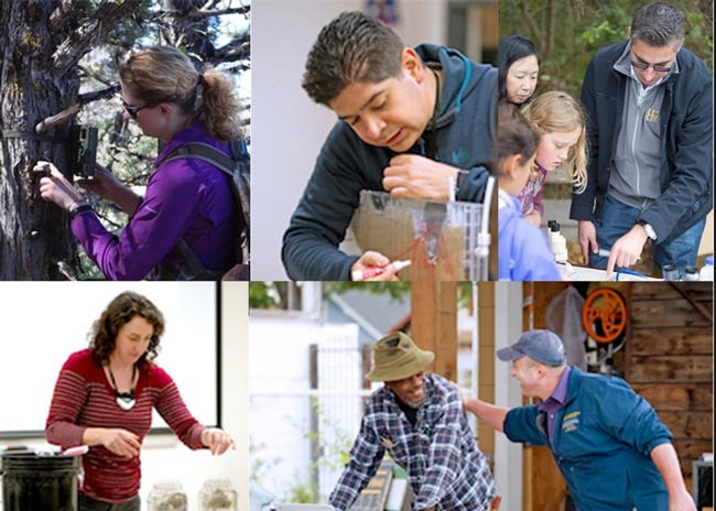 Collage of 5 UC Cooperative Extension scientists working. Woman in purple shirt examines tree bark. Latino man draws to show groundwater movement in soil. Man in sunglasses points to insects as blonde and brunette girls look on. Woman with dark brown hair demonstrates soil movement in 2 large jars of water. Man in baseball hat slaps the back of a man in urban garden.