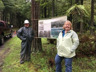 Pete Bussman's redwood forest