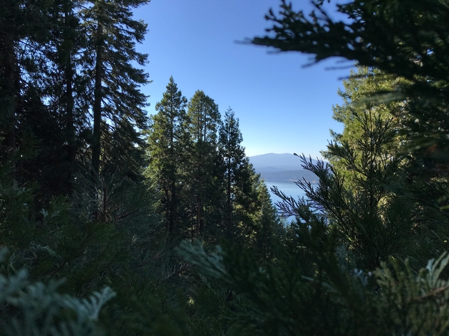 Mark B. still had a great view in Almanor this past weekend