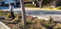Igor shares groundbreaking research to incorporate trees into city bioswales for ANR Adventures Blog