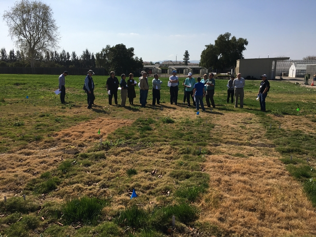 Cheryl shares her herbicide work with the UC ANR Governing Council. Photo courtesy of David Lewis.