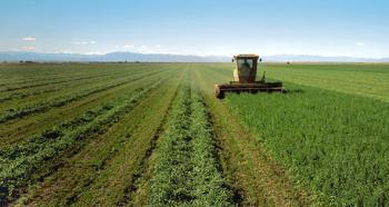 Alfalfa-FieldHarvest