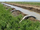 Siphon tubes delivering water to an alfalfa field.