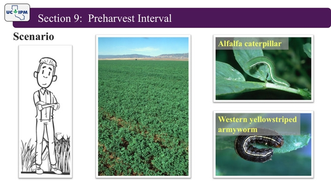 Online Pesticide Training