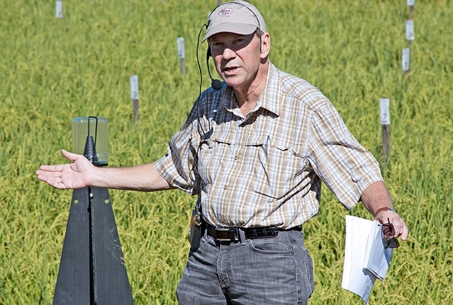 Extension entomologist Larry Godfrey presenting a talk at the 2016 California Rice Field Day in Biggs. He spoke at the annual field day for 25 years. (Photo by Evett Kilmartin, UC ANR)