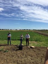Brad Hanson, Birgit Puschne, Joe DiTomaso Discuss Poisonous Weeds