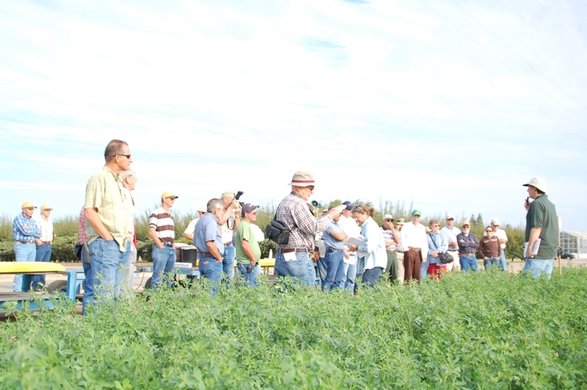 Alfalfa Field Day