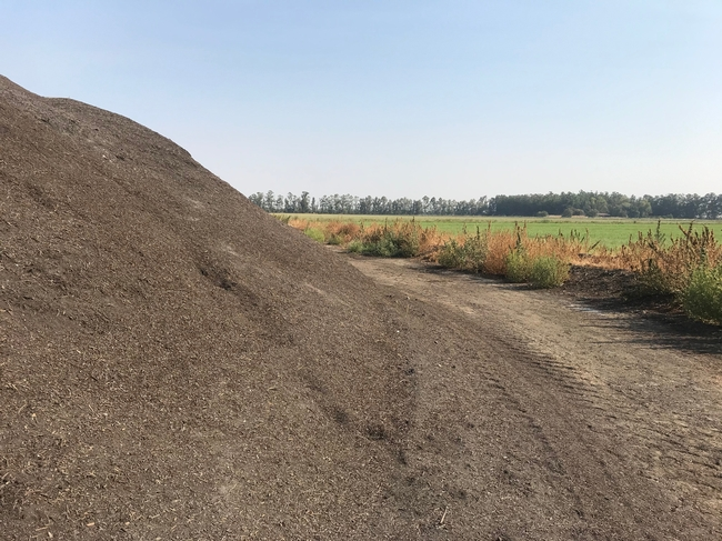 Compost will be evaluated for improving soil structure and fertility in alfalfa via a CDFA Healthy Soils grant.