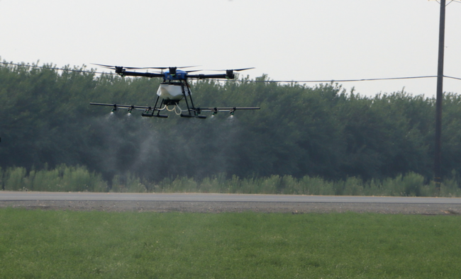 Photo 1. Drone application of pesticides for summer worm control in alfalfa hay.