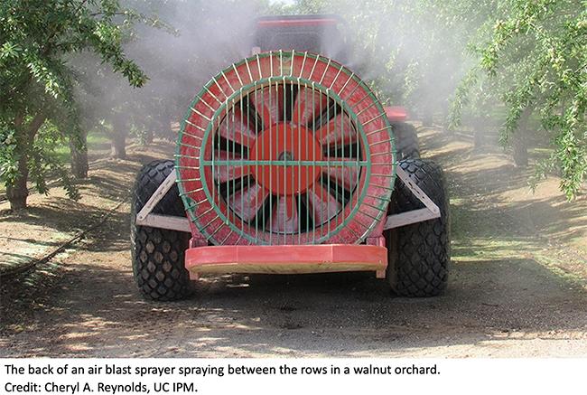 Air Blast Sprayer in Walnut Orchard