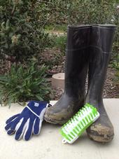 Scrub boots with a stiff-bristled brush. Photo by Michelle Lande.