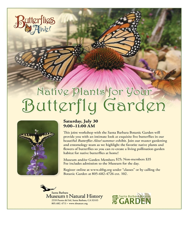 july30 flyer jpeg - Live Butterfly Garden
