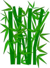 bamboo-307897 640