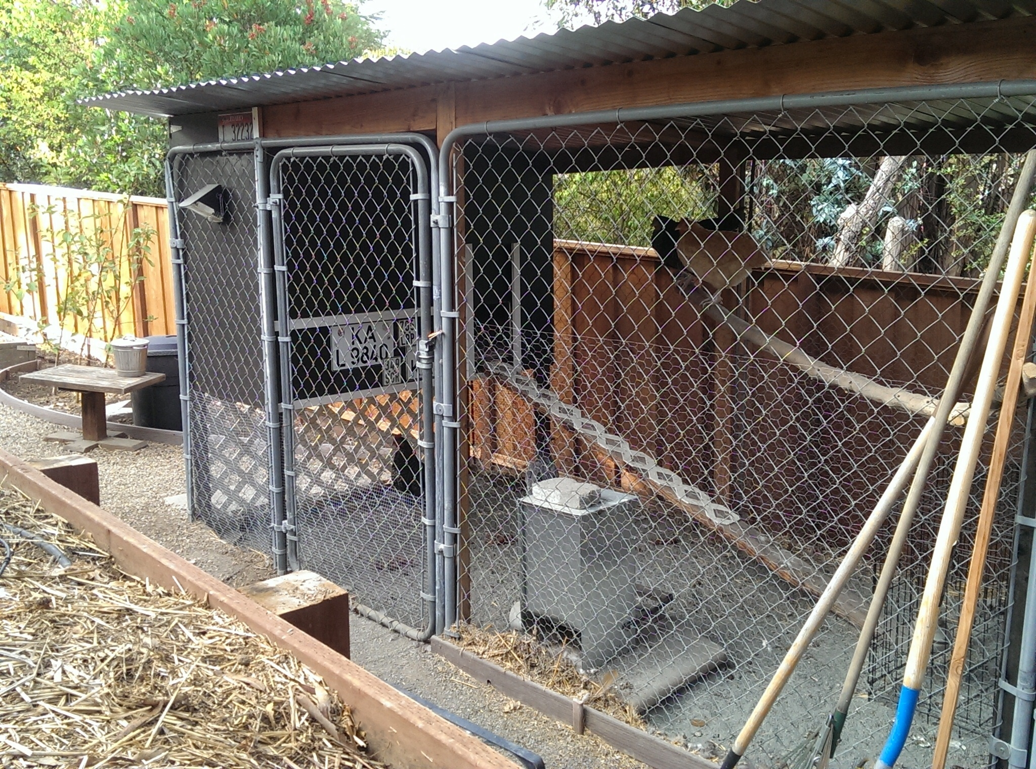 Chicken coops, the good the bad the ugly. - HOrT COCO-UC Master ...