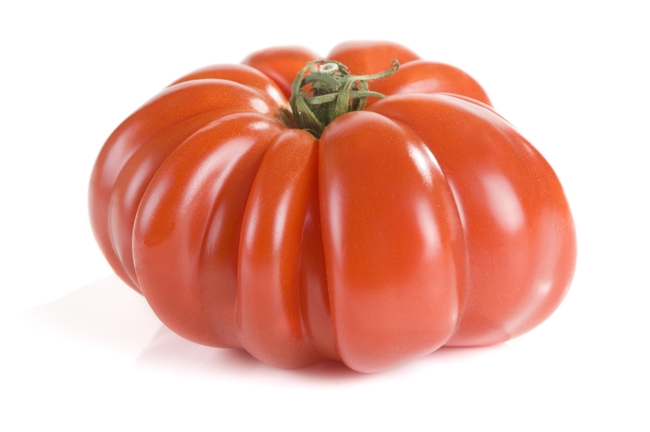 Mortgage Lifter Tomato variety