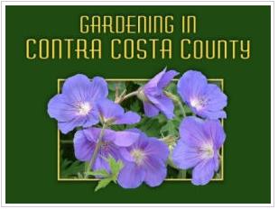 CCWD Plant Selection