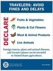 US Customs & Border Protection Notice About Bringing in Plants (Includes Seeds)