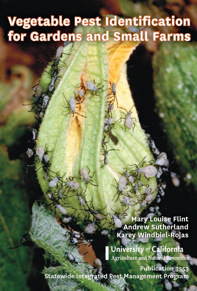 Outstanding Vegetable Pest Identification Cards Community Pest News Home Interior And Landscaping Eliaenasavecom