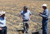 Australian vegetable crop consultants and farmer network coordinators Mike Titley (left) and David Vernon (center), meet with Pinnacles Organic farmer, Phil Foster at his farm in Hollister, CA on August 15, 2019