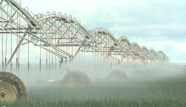 Overhead irrigation systems, such as center pivots, are particularly useful when coupled with conservation tillage.