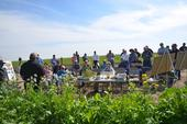 Audience at Lucero Farms Field Day, February 26, 2015.
