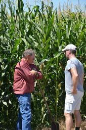 Two guys in a corn field.