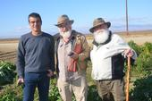 Roberto Botelho, Angus Wright, and Tom Willey (left to right) visit the NRI Project field in Five Points, CA, February 22, 2018