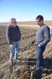 Jesse Sanchez and Roberto Botelho (left and right) examine soil at Sano Farms cover crop fields in Firebaugh, CA, February 23, 2018