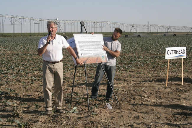 Jeff Mitchell presents research updates on a broccoli field with overhead irrigation.
