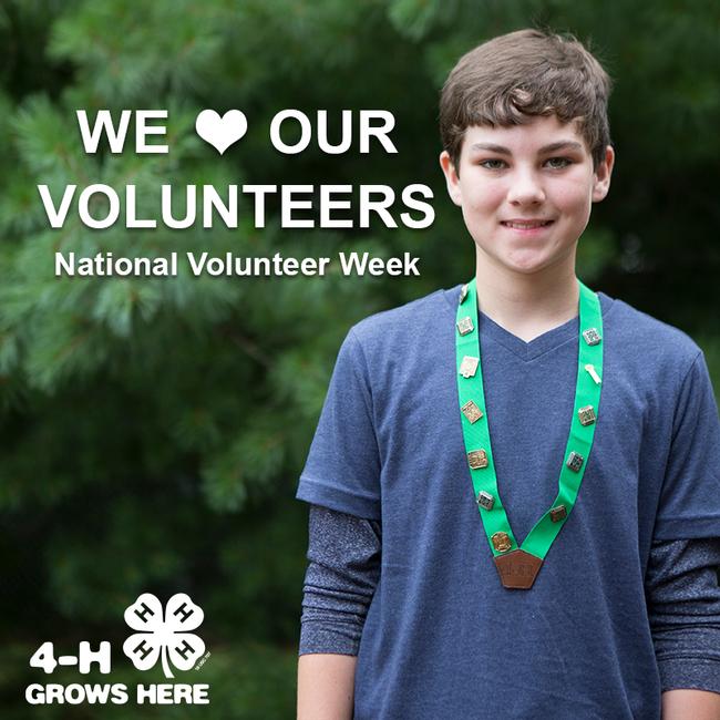 Natl Volunteer Week 800x800 5