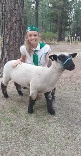 Mollie of Treasure Mountain 4-H with Hampshire cross lamb Doug (1st)