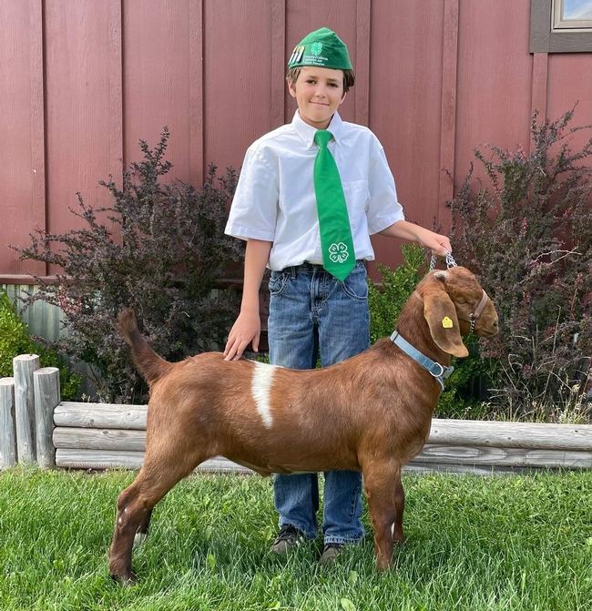 Everett of Sierra Valley 4-H with boar goat Oreo (2nd year)