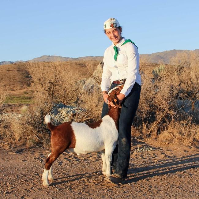 Aurora-2ndyr-Sierra Valley 4-H-Boer goat Racer