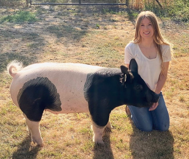 Natalie of American Valley 4-H with Hampshire Barrow pig Bullseye (5th and final year)
