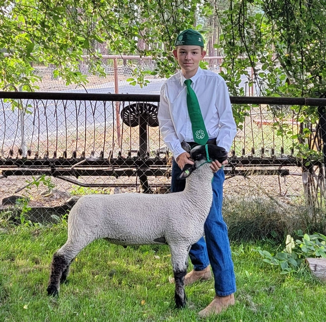 Ronnie of American Valley 4-H with whether lamb Buddy